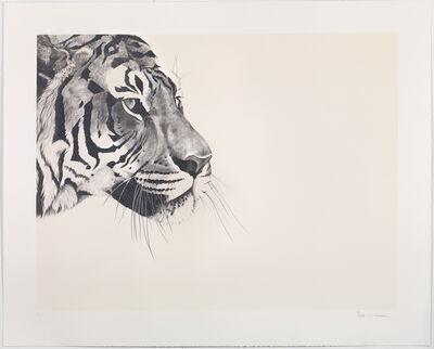 Rose Corcoran, 'Glitter Tiger on cream Silkscreen'