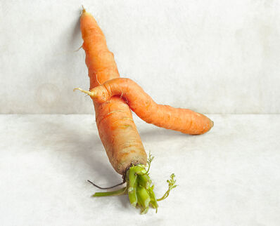 David Halliday, 'Carrots (Against the Wall)', 2007
