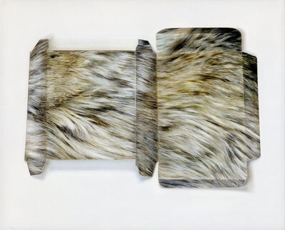 Claire Kerr, 'Fur-effect Box', 2016