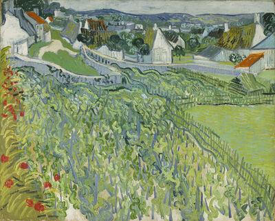 Vincent van Gogh, 'Vineyards at Auvers', June 1890
