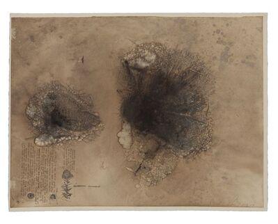 Ricardo Brey, 'Trusted', 2009