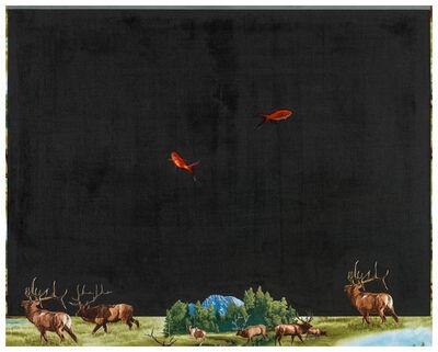 Chi Chien 齊簡, 'Elk', 2017