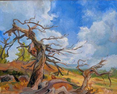 CHARIS J. CARMICHAEL BRAUN, 'Caitlin's Tree', 2018