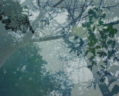 Cheng-Yen LIN, '映像・印象-12 Reflection・Impression-12', 2016