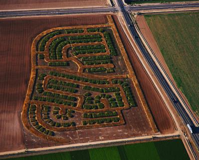 Matthew Moore, 'Rotations: Moore Estates 5', 2006