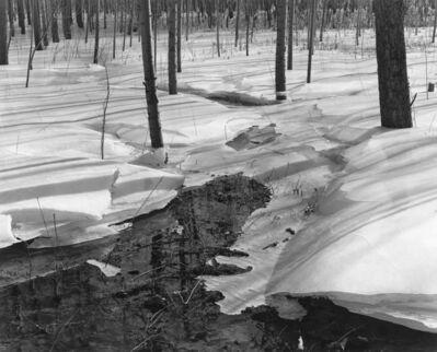付 羽, '林中融冰 Melting Ice in Forest', 2013