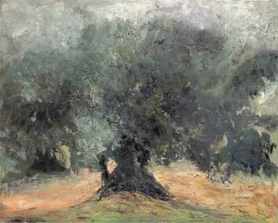 Albert Hadjiganev, 'L'oliveraie-étude'