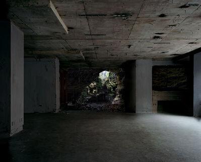 Noemie Goudal, 'Warren', 2011