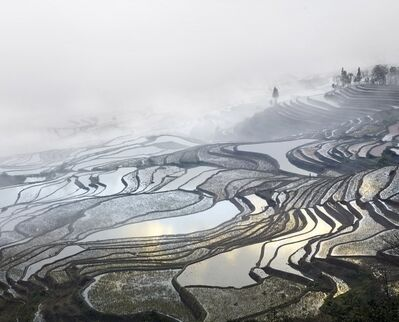 David Burdeny, 'Rice Terraces, (Duoyishu), Yunnan, China', 2013