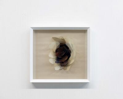 Maurizio Donzelli, 'Mirror 3817', 2017