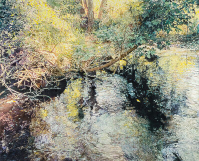 William Nichols, 'Moment at Cedarburg Creek', 2016