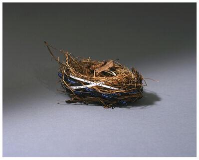 Miranda Maher, 'Home Improvement Two 2. Found Nests', 2010