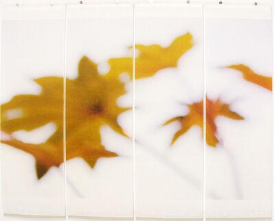 Jeri Eisenberg, 'Ornamentals, No. 2', 2008