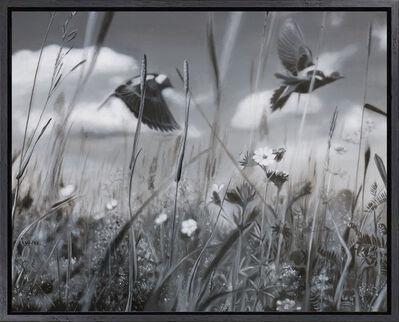 Gabriel Tempesta, 'Grassland Pulse', 2019