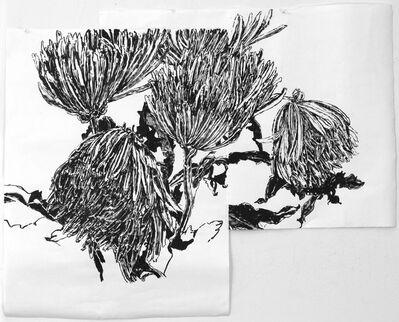 Dawn Clements, 'Chrysanthemums ', 2014