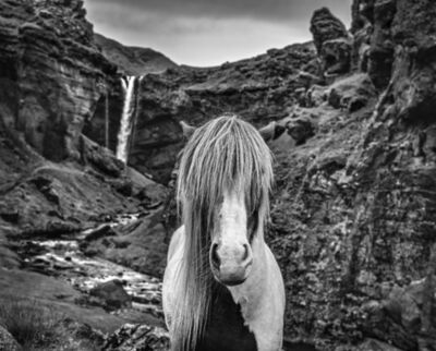 David Yarrow, 'Game of Thrones', 2020