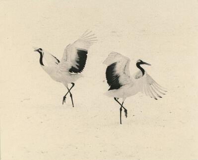Yamamoto Masao, '#1656'