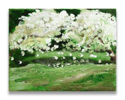 Klodin Erb, 'Blossoms', 2017