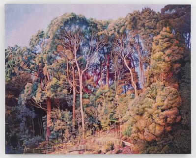 Yasushi Ikejiri, 'Grove of Trees', 2016