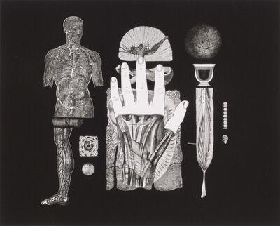Frederick Sommer, 'Untitled', 1991