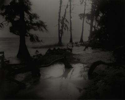 Sally Mann, 'Deep South, Untitled, (Bones II)', 1996