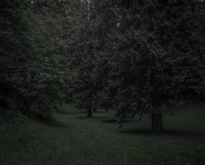 Chris Bennett, 'From the series Darkwood, #22', 2014