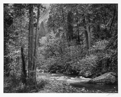 Ansel Adams, 'Tenaya Creek, Dogwood, Rain, Yosemite Valley, California', 1948