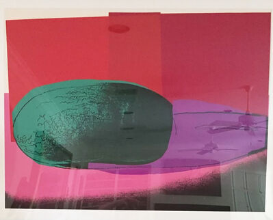 Andy Warhol, 'Watermelon, from Space Fruit: Still Lifes (F. & S. 199)', 1979