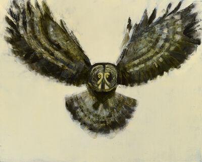 Rebecca Kinkead, 'Grey Owl in Flight', 2018