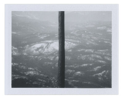 Sean McFarland, 'Divided View', 2013