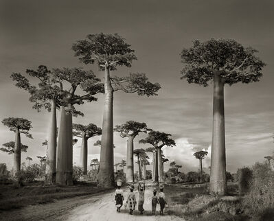 Beth Moon, 'Off to Market.', 2000