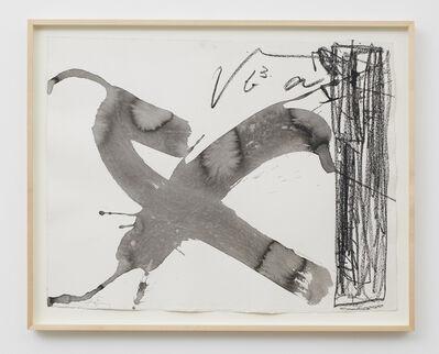 Antoni Tàpies, 'X i franja lateral', 1993
