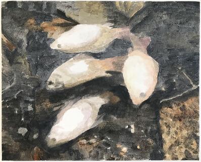 Lucien Smith, 'Dead Fish', 2017