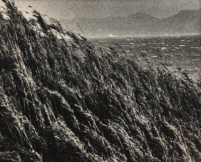 Ishiuchi Miyako, '絶唱、横須賀ストーリー#5 野比海岸, Yokosuka Story #5 Nobikaigan', 1976