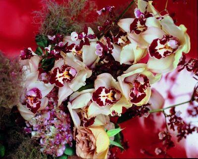 Nobuyoshi Araki, 'Flowers', 2007