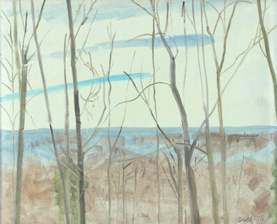 Lois Dodd, 'Winter Landscape From White House Flatbrookville', 1976