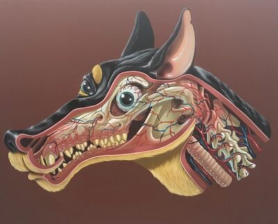 NYCHOS, 'German Jagdt Terrier Head Dissection', 2018