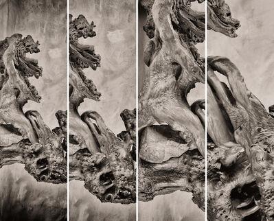 Daniel Eskenazi 丹尼爾·埃斯肯納茨, 'Synoptikos I', 2019