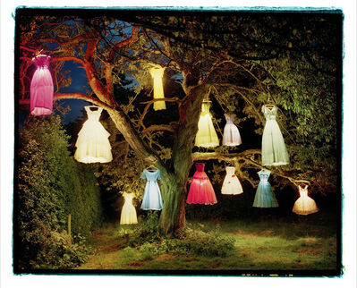 Tim Walker, 'The Dress Lamp Tree, England ', 2004