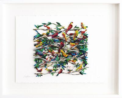 David Gerstein, 'Exotic Birds - Paper Cut ', 2006