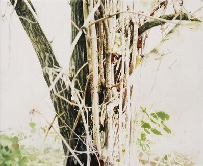 Stephan Kaluza, 'Transit (II) - 53', 2019