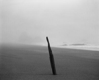 Christine Huhn, 'Driftwood and Fog, Rodeo Beach', 2020