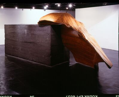 Nuno Ramos, 'Shackleton 2', 2000