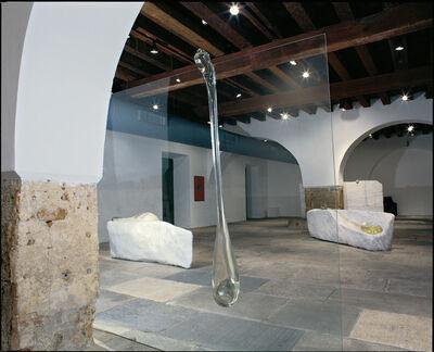 Nuno Ramos, 'Gota', 1998