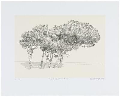 Anton Kannemeyer, 'Pine Trees, Simon's Town', 2015