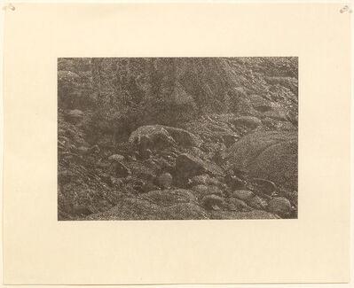 Franz Gertsch, 'Cima del Mar (Detail)', 1990