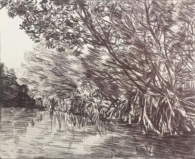 Jennifer Basile, 'Florida Mangroves II', 2016