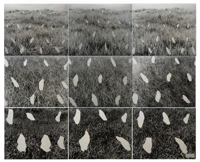 Masafumi Maita, 'STREAM '79', 1979