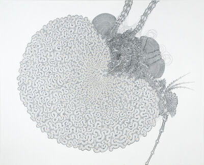 Daniel Zeller, 'Quagmirical Dispersion', 2014