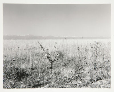 Robert Adams, 'Land to be developed, adjoining Interstate 25, Adams County, Colorado', 1973, 74, printed 2007